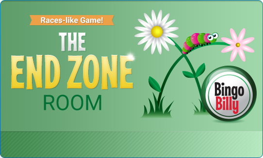 THE END ZONE ROOM